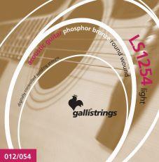 Galli LS-1254 kielet teräskieliselle kitaralle