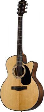 Farida R-10CE elektroakustinen kitara