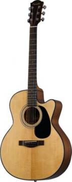 Farida R-21CE elektroakustinen kitara
